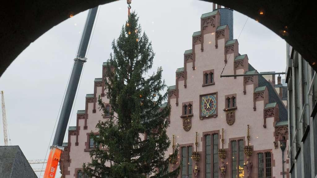 wo steht der gr te weihnachtsbaum in deutschland my blog. Black Bedroom Furniture Sets. Home Design Ideas