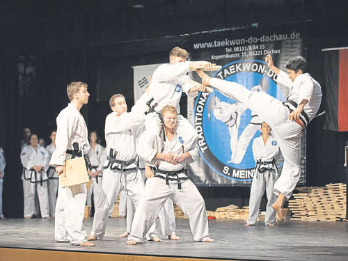 Alle Variationen des Taekwon-Do