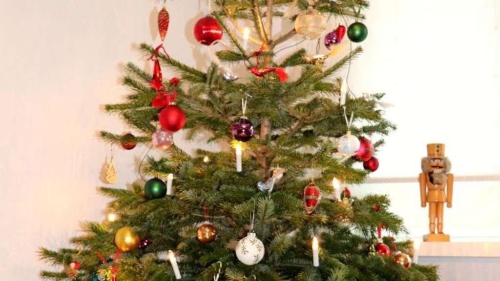 Fc Bayern Tannenbaum.Die Weihnachtsbaum Trends 2018 Dorfen